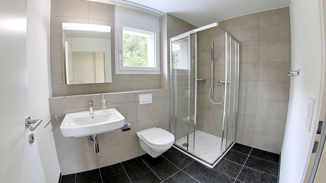 wohnen mit seeblick in der goldenen wand birrwil. Black Bedroom Furniture Sets. Home Design Ideas